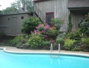 Rich shrub and perennial planting to keep the poolside interesting.